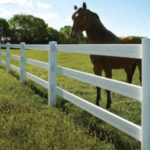 Horse Fencing Certagrain